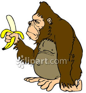 Ape clipart #14, Download drawings