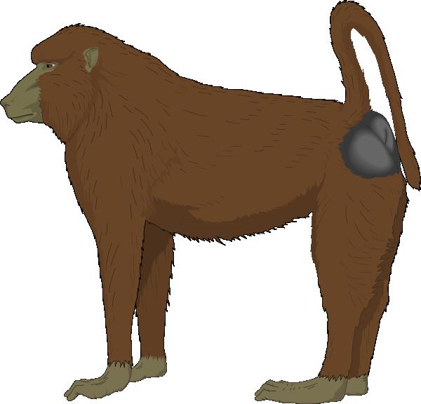Ape svg #13, Download drawings