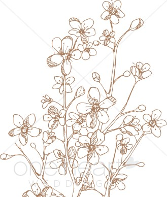 Apple Blossom clipart #9, Download drawings