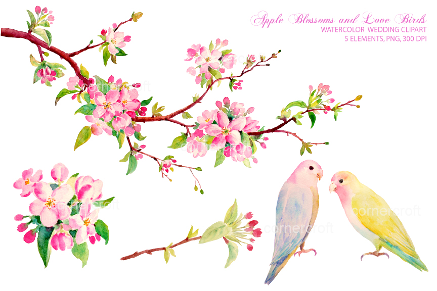 Apple Blossom clipart #5, Download drawings