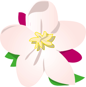 Apple Blossom clipart #18, Download drawings