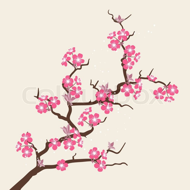 Apricot Blossom clipart #6, Download drawings