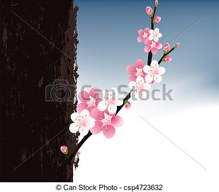 Apricot Blossom clipart #1, Download drawings