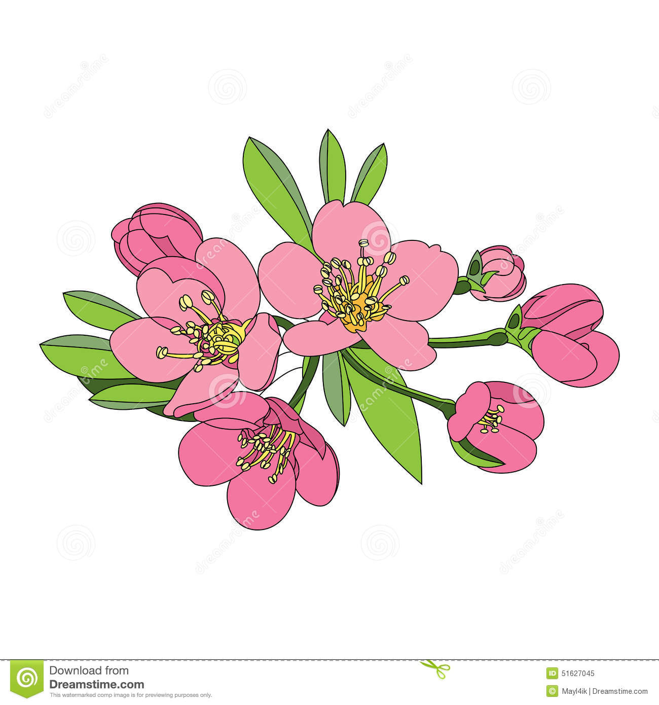 Apricot Blossom clipart #2, Download drawings