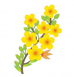 Apricot Blossom svg #19, Download drawings