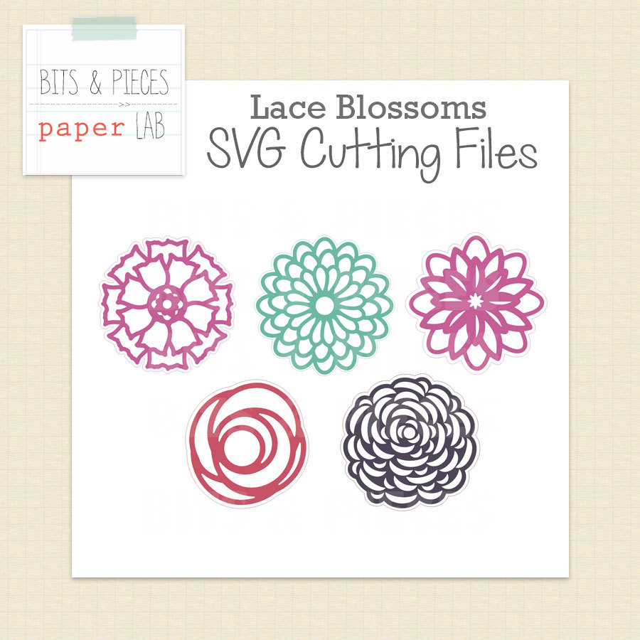 Apricot Blossom svg #6, Download drawings