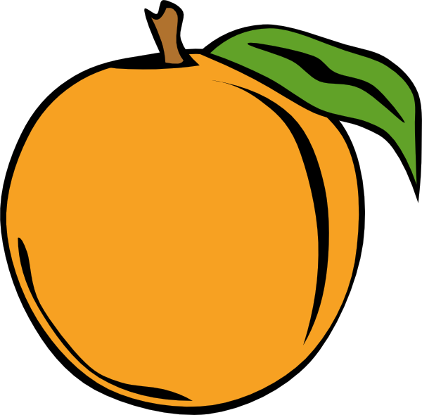 Apricot clipart #16, Download drawings