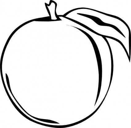 Apricot clipart #5, Download drawings