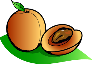 Apricot clipart #19, Download drawings