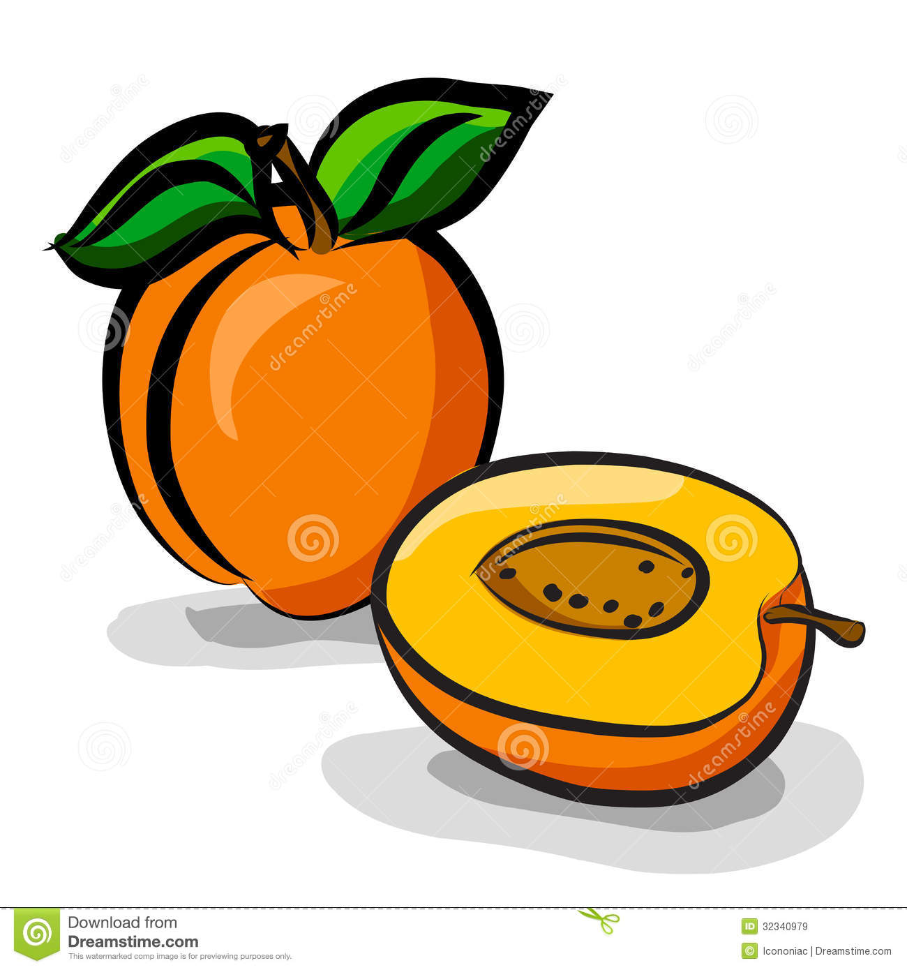 Apricot clipart #8, Download drawings
