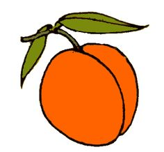 Apricot clipart #13, Download drawings