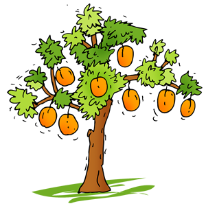 Apricot Tree clipart #14, Download drawings