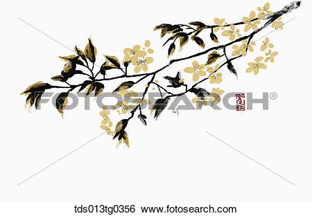 Apricot Tree clipart #4, Download drawings