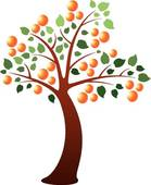 Apricot Tree clipart #11, Download drawings