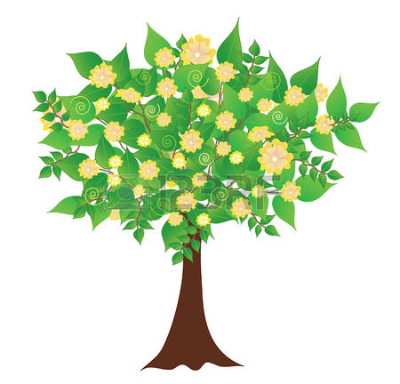 Apricot Tree clipart #18, Download drawings