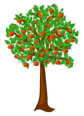 Apricot Tree clipart #17, Download drawings