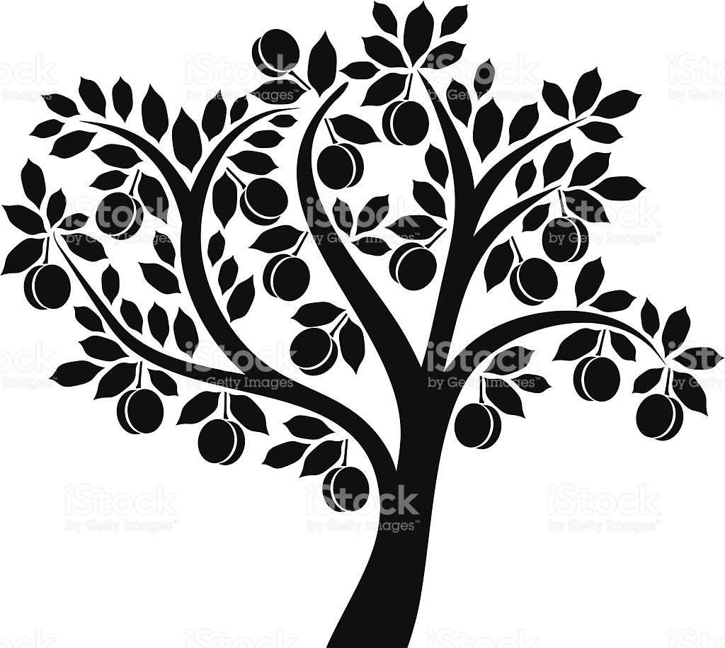 Apricot Tree clipart #1, Download drawings