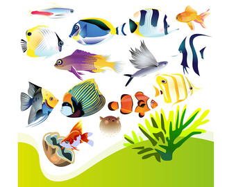 Aquarium clipart #11, Download drawings