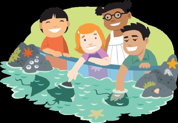 Aquarium clipart #8, Download drawings