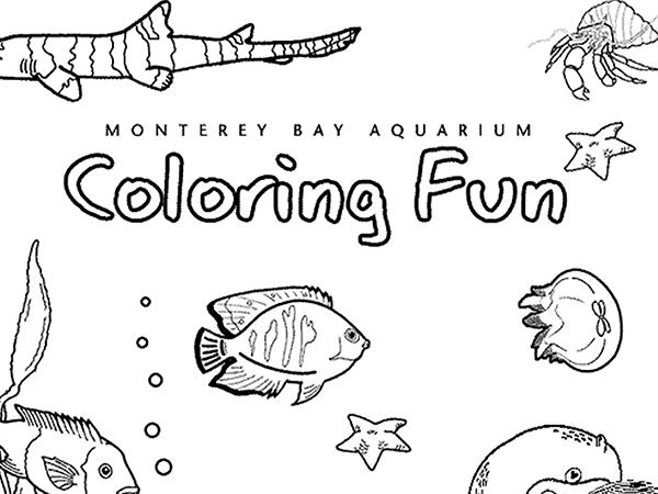Aquarium coloring #19, Download drawings