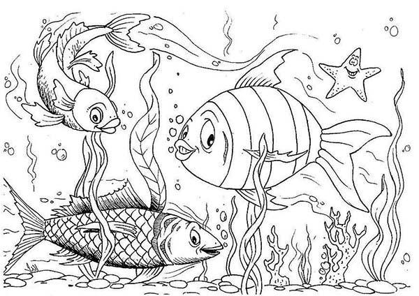 Aquarium coloring #2, Download drawings