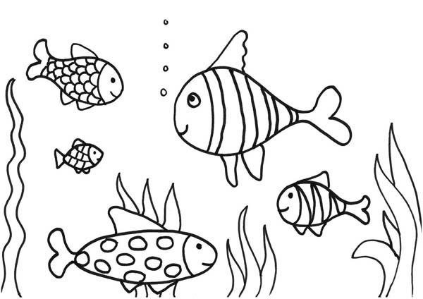 Aquarium coloring #14, Download drawings