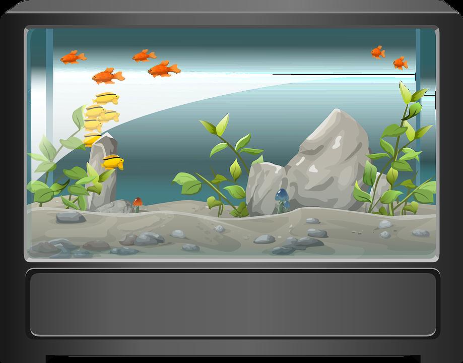 Aquarium svg #8, Download drawings