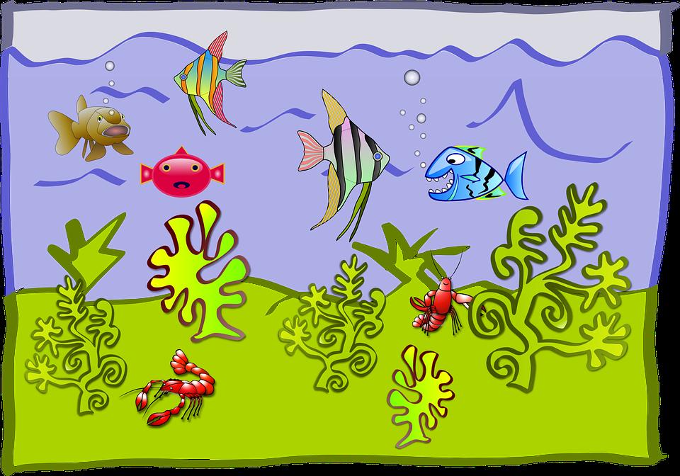 Aquarium svg #7, Download drawings