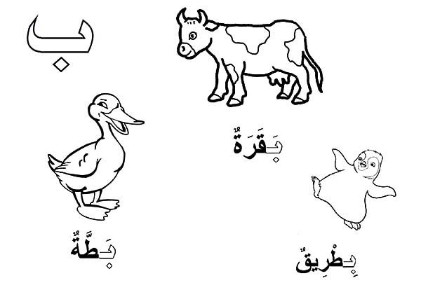 Arabis coloring #1, Download drawings