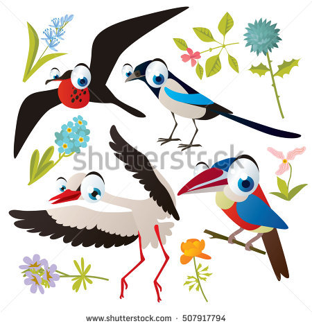 Aracari clipart #5, Download drawings