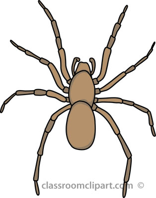 Arachnid clipart #19, Download drawings
