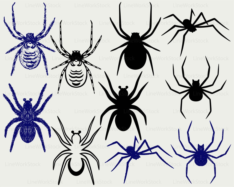 Arachnid svg #14, Download drawings