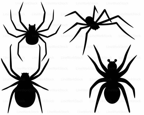 Arachnid svg #8, Download drawings