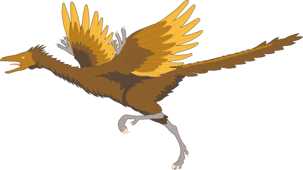Archaeopteryx clipart #17, Download drawings