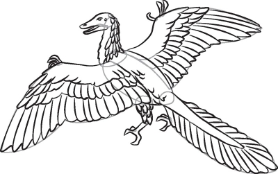Archaeopteryx clipart #12, Download drawings