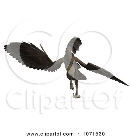 Archaeopteryx clipart #8, Download drawings
