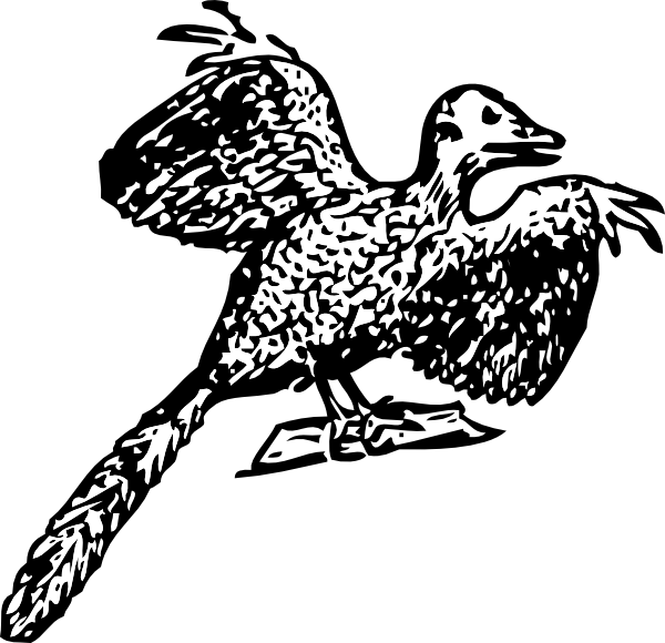 Archaeopteryx clipart #18, Download drawings