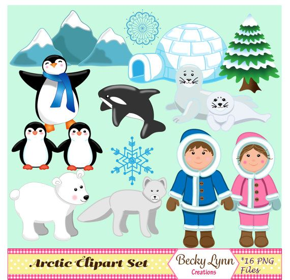 Arctic clipart #6, Download drawings