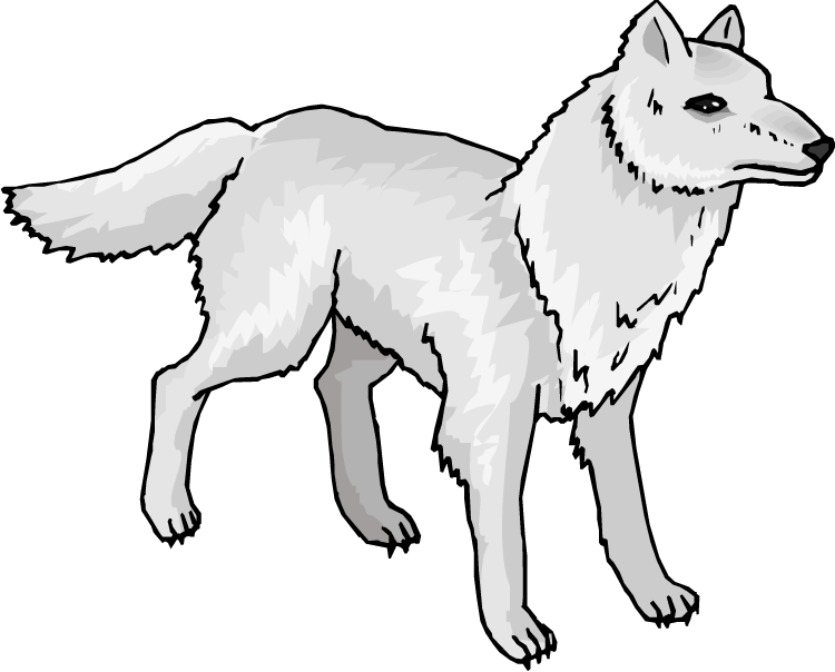 Polar Fox clipart #14, Download drawings