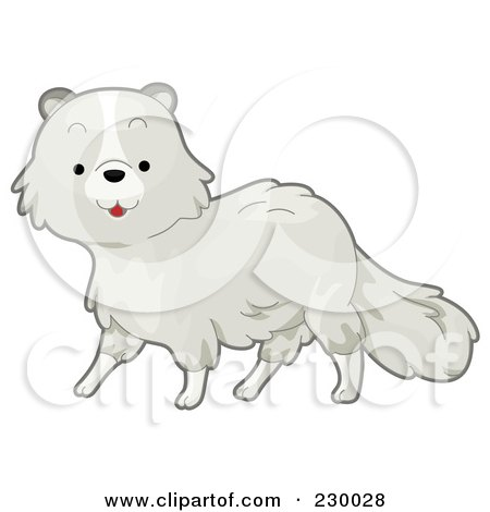 Polar Fox clipart #8, Download drawings