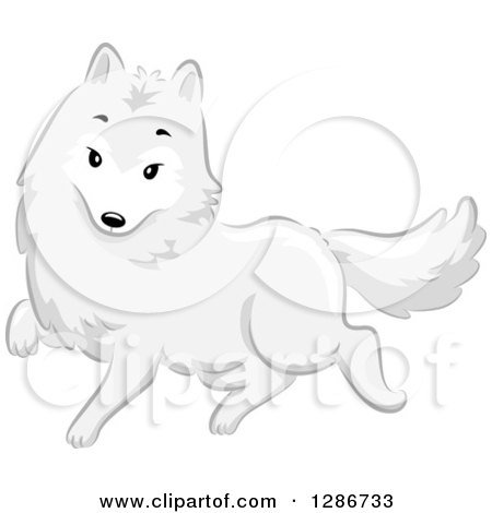 Polar Fox clipart #1, Download drawings