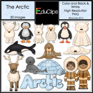 Arctic Hare clipart #14, Download drawings