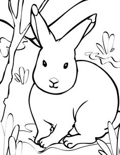 Arctic Hare clipart #8, Download drawings