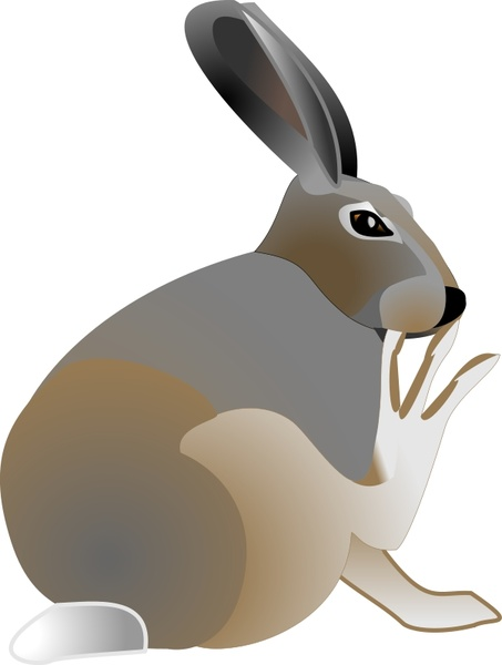 Arctic Hare svg #20, Download drawings