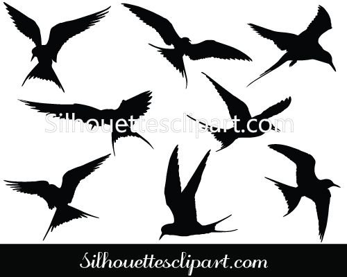 Arctic Tern clipart #5, Download drawings