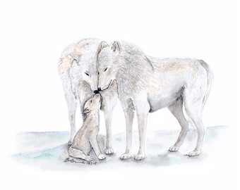 Arctic Wolf clipart #3, Download drawings