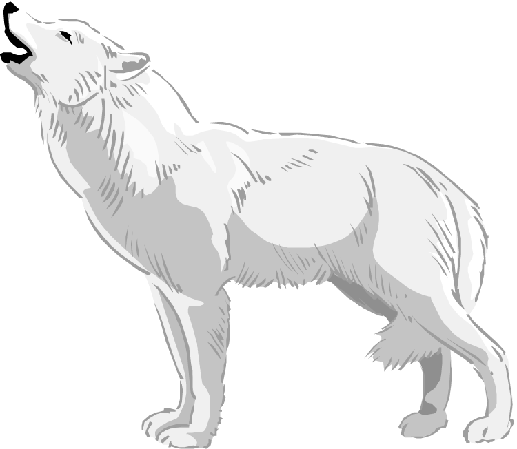 White Wolf clipart #7, Download drawings