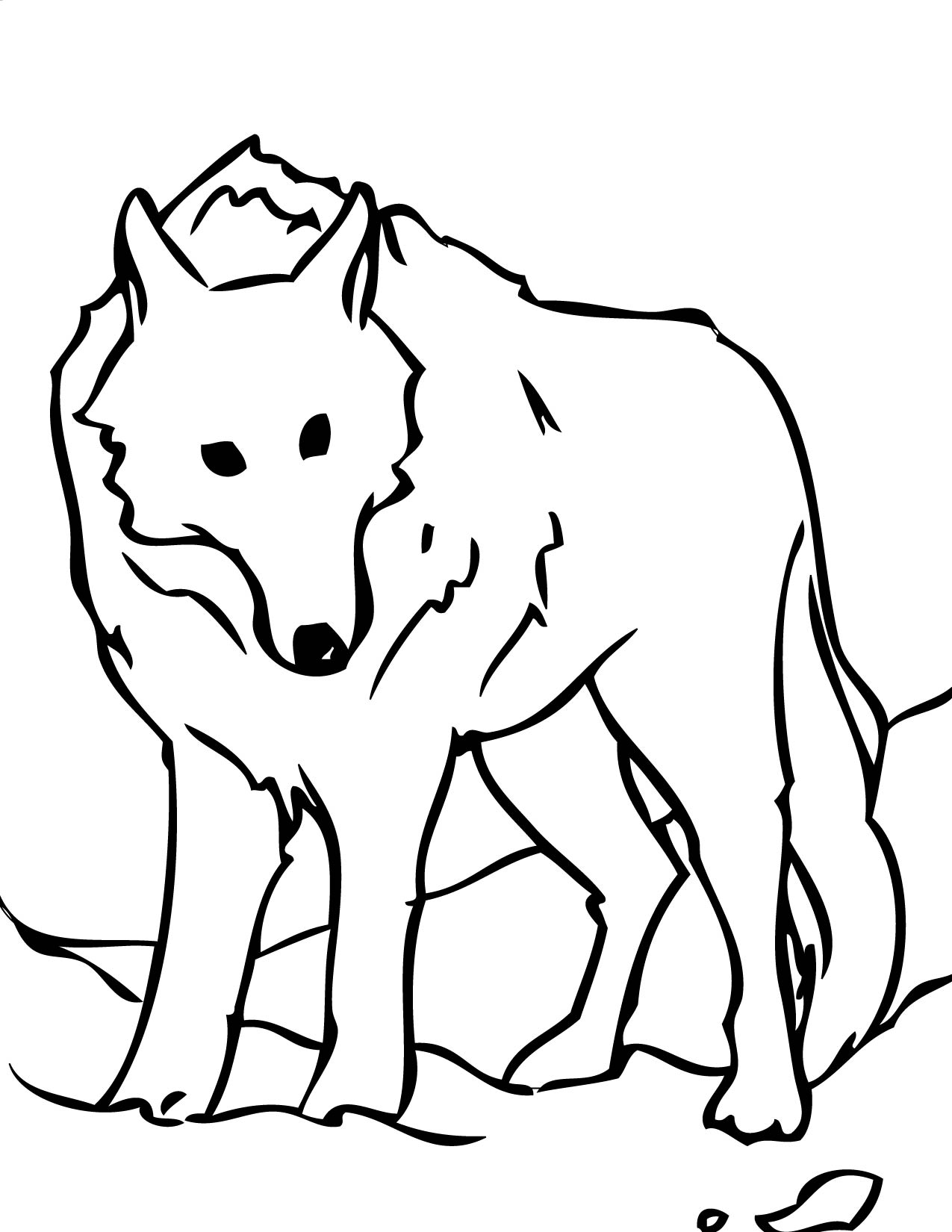 Arctic Wolf coloring #8, Download drawings