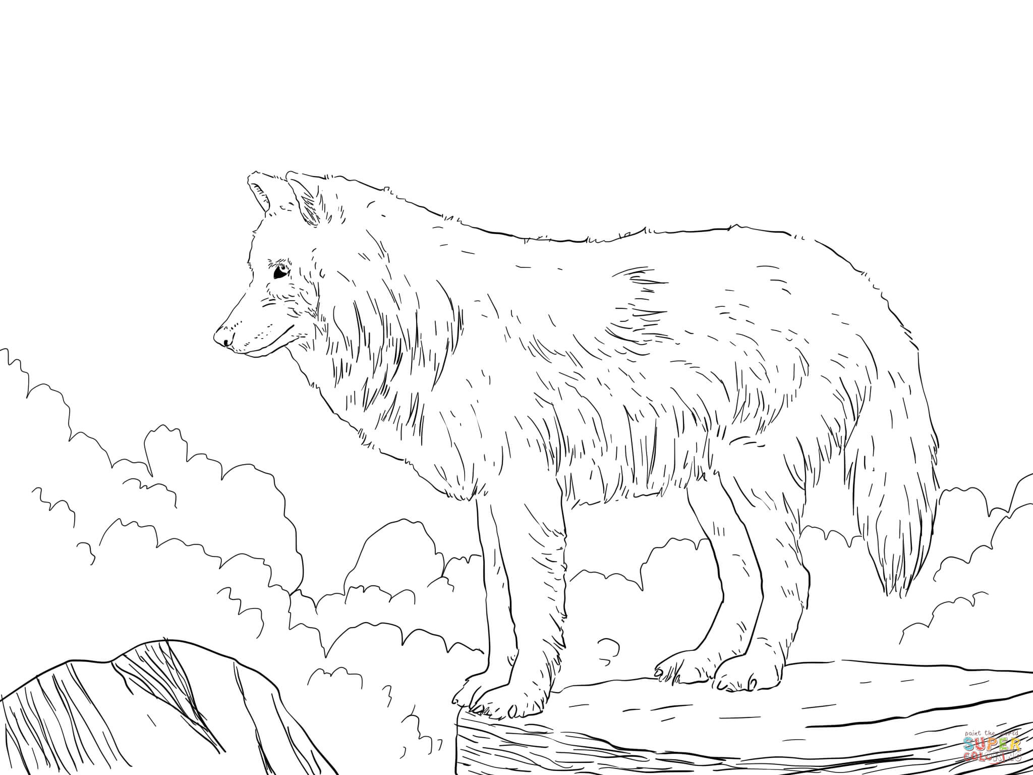 Arctic Wolf coloring #12, Download drawings