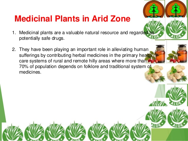 Arid Zone clipart #12, Download drawings